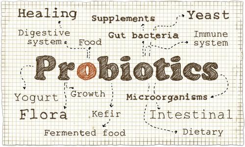 Probiotic-Words