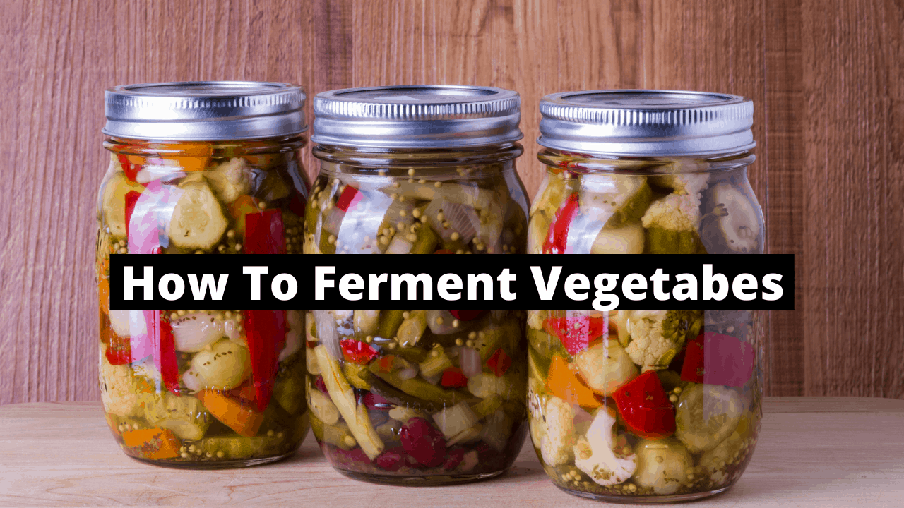 Fermented-Vegetables-Thumbnail