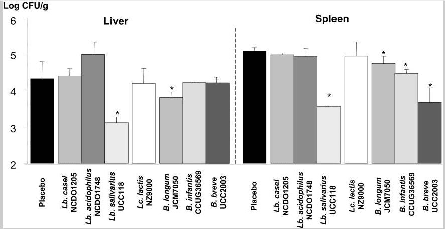 Salivarius-Infection-Graph